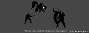ninjas cant catch you if youre pegasus pony Facebook Cover Photo