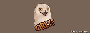 o rly owl Facebook Cover Photo