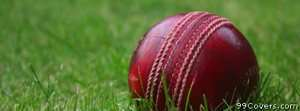 cricket ball Facebook Cover Photo