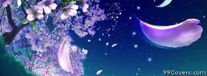abstract night flowers Facebook Cover Photo