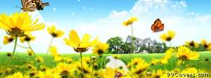 flowers field bugs house Facebook Cover