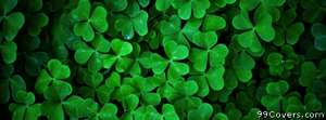 green clovers Facebook Cover Photo