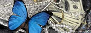 money butterfly Facebook Cover Photo