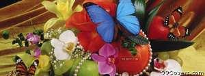 clutter butterflies Facebook Cover Photo