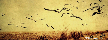 vintage birds landscape Facebook Cover Photo