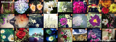 colorful Flower Collage Facebook Cover Photo