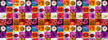Flower Collage Facebook Cover Photo