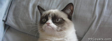 grumpy cat Facebook Cover Photo