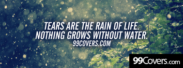 the rain of life Facebook Cover Photo