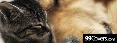 cat and dog friends Facebook Cover Photo