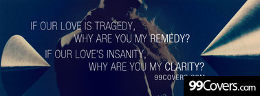 zedd clarity featuring foxes lyrics Facebook Cover Photo
