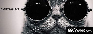 cool cat facebook timeline cover Facebook Cover Photo