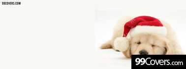 cute sleeping christmas puppy Facebook Cover Photo