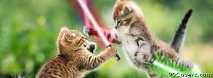 jedi cats Facebook Cover Photo