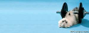 kitty lifting weight Facebook Cover Photo