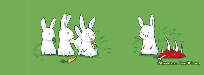 Bunnies Bunny Funny Animal Animals Facebook Cover Photos