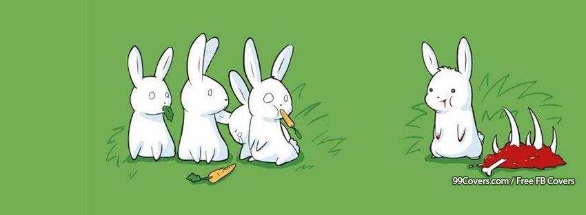 Funny Bunnies Facebook Cover Photos