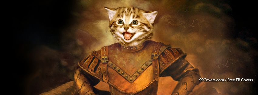 Cat Warrior Armor Cute Funny Facebook Cover Photos