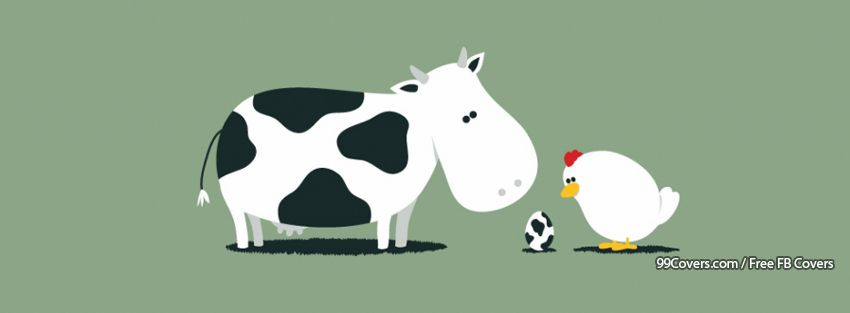 Moo Egg Facebook Covers
