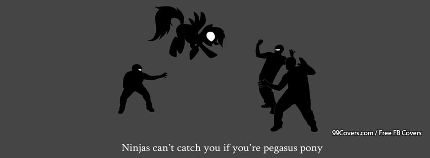Ninjas Cant Catch You If Youre Pegasus Pony Facebook Cover Photos