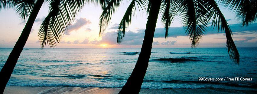 Beach Facebook Banners Facebook Cover Kings Beach