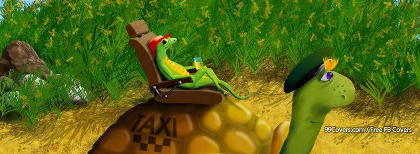 Funny Animals 43 Facebook Cover Photos