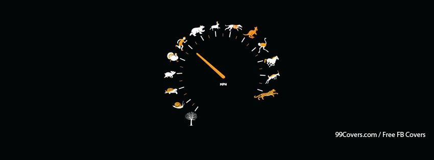 Funny Animal Speedometer Facebook Cover Photos