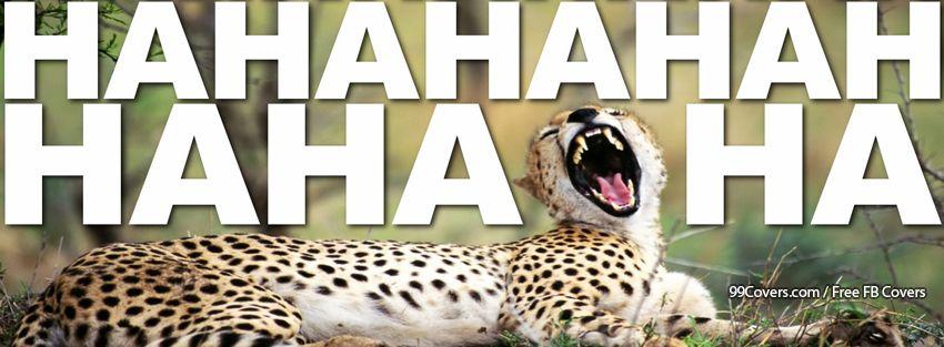 Funny Animals Cheetah Facebook Cover Photos