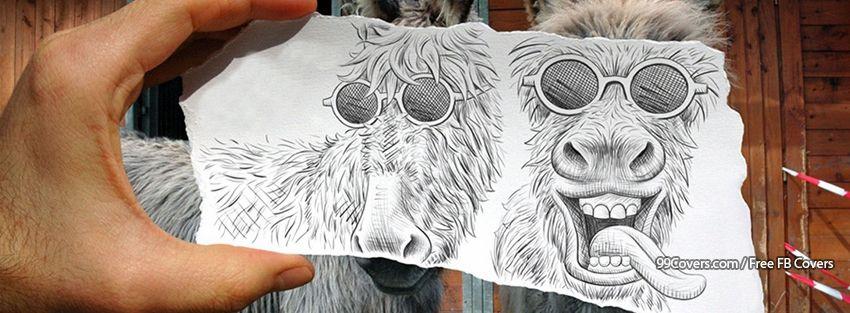 Funny Animals Facebook Cover Photos