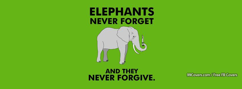 Funny Elephant Facebook Cover Photos