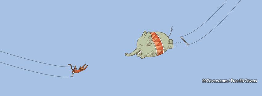 Funny Elephant 3 Facebook Cover Photos