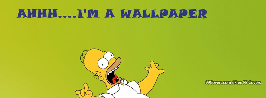 Funny Homer Simpson 2 Facebook Cover Photos