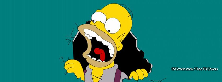 Funny Homer Simpson The Simpsons TV Series Facebook Cover Photos