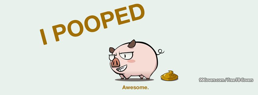 Funny Pig Facebook Cover Photos