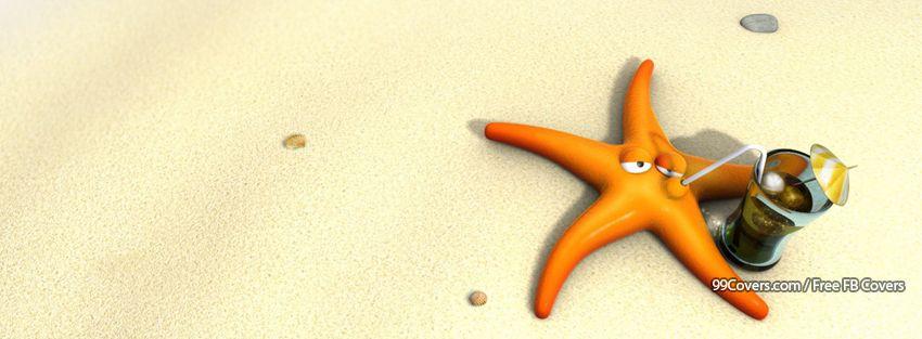 Funny Summer Beach Starfish Facebook Cover Photos