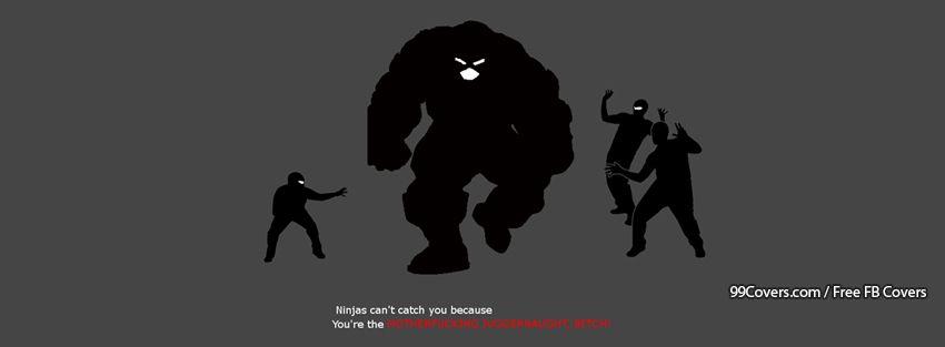 Meme Ninjas Facebook Cover Photos