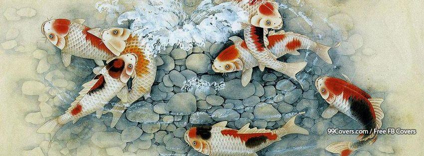 Facebook cover photos japanese art koi fish facebook covers for Chinese art koi fish