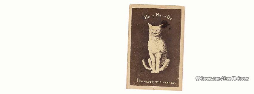 Vintage Cat Card Facebook Cover Photos