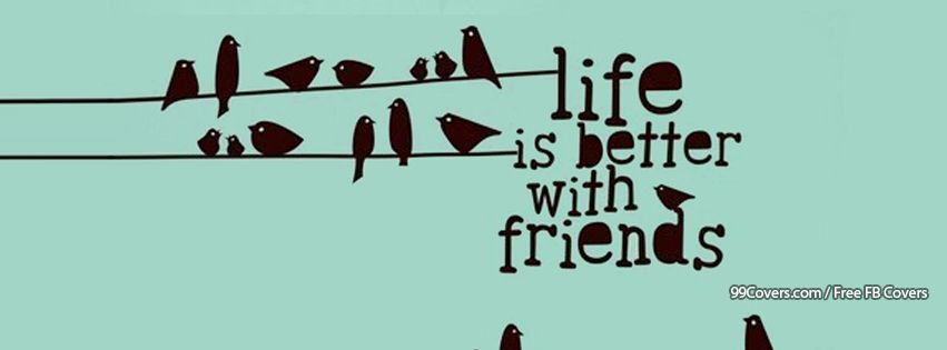 Life Is Better With Friends Birds Illustration Facebook Cover Photos
