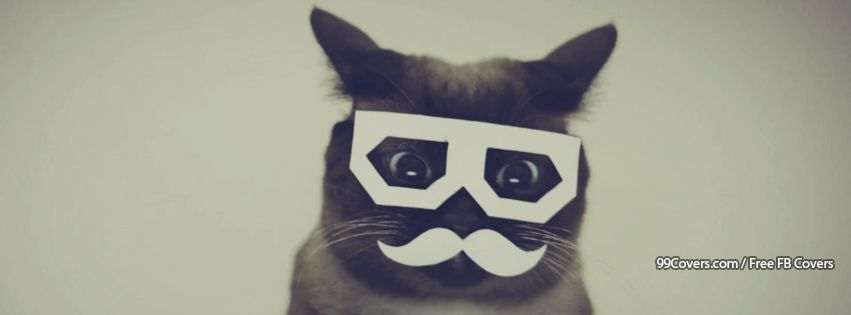 Funny Cat Mustache Glasses Facebook Cover Photos