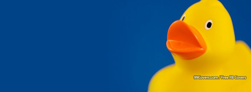 Rubber Ducky Fb Timeline Cover Image