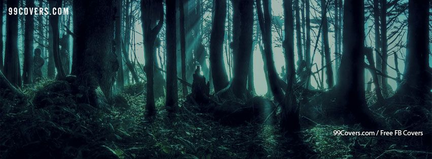 Facebook Cover Photos Creepy Forest At Night Facebook Cover Photos