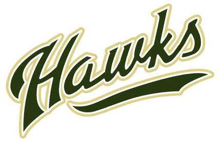 Hawks logo 2