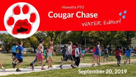 Cougar chase 2019