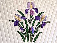 Purple and Yellow Iris Applique Quilt