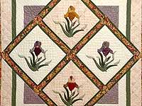 Iris Delight Applique Quilt