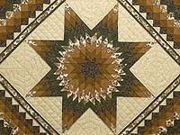 Golden Brown Tan and Green Lone Star Trip Quilt