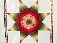 Brown, Red and Green Lone Star Quilt