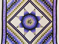 Purple and Green Lone Star Trip Quilt