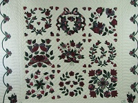 Burgundy Green Applique Sampler Quilt